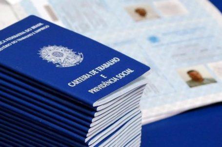 Brasileiros voltam a procurar trabalho, e desemprego diante da pandemia bate recorde, diz IBGE
